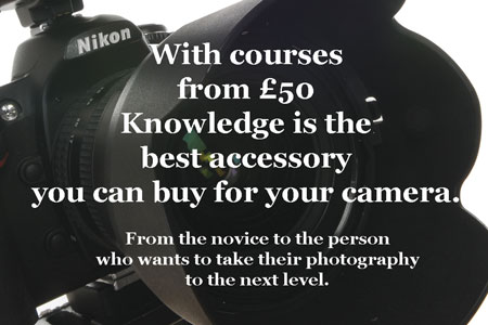 Courses from the novice to the experienced photographer